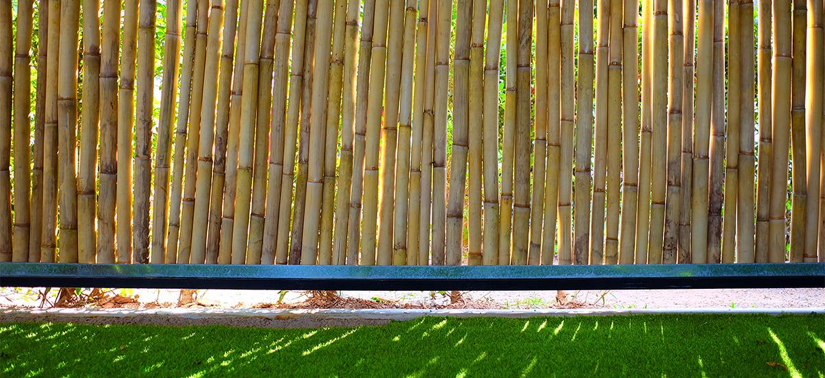 Natürlicher Sichtschutz aus Bambus